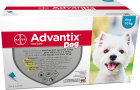 Advantix Dog 100/500 Solution Pour Spot-On Pour Chiens 4-10kg Pipettes 24x1ml