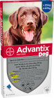 Advantix Dog 400/2000 Solution Pour Spot-On Pour Chiens 25-40kg Pipettes 6x4ml