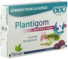 Tilman Plantigom Goût Fruits Rouges 24 Gommes