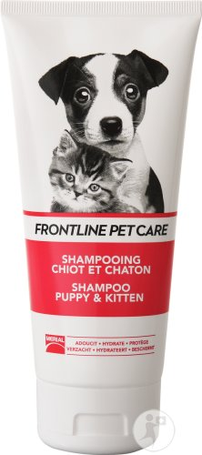 Frontline Pet Care Shampoing Chiot Et Chaton Tube 200ml