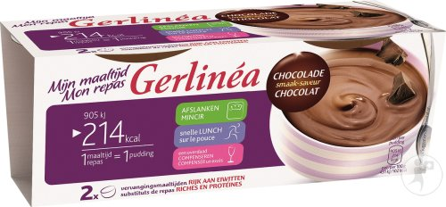 Gerlinéa Pudding Saveur Chocolat 2x210g