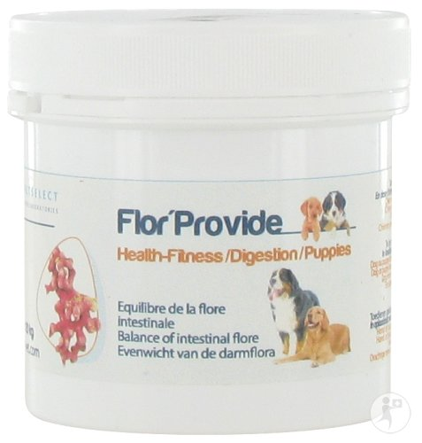 Vetselect Flor'Provide Chien Pot 120g