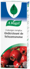 A.Vogel Crataegus Complex 80 Tabletten