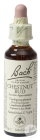 Bach Flower Remedie 07 Chestnut Bud (Kastanjeknop) 20ml