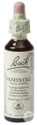 Bach Flower Remedie 16 Honeysuckle (Kamperfoelie) 20ml