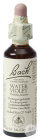 Bach Flower Remedie 34 Water Violet (Waterviolier) 20ml