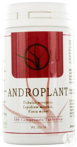 Dynarop Androplant 100 Tabletten