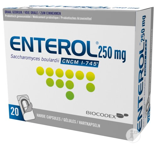 Enterol Blister Harde Capsules 20x250mg