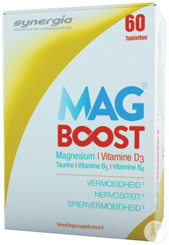 Synergia MagBoost 60 Tabletten